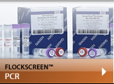 flockscreen pcr